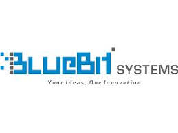 Blue Bit Systems