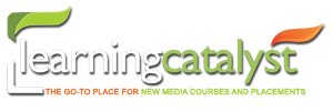 The Learning Catalyst